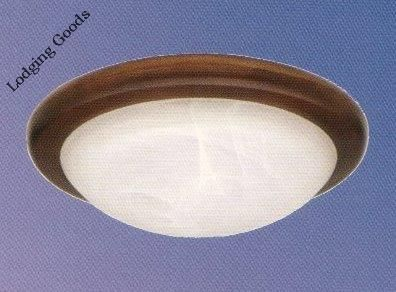 30w Ceiling Fixture Rust Finish