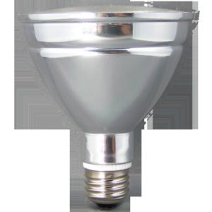 LED PAR 30 ACCENT INDOOR/OUTDOOR FLOOD LIGHT