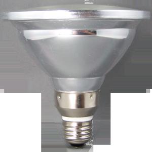 LED PAR 38 ACCENT FLOOD LIGHT