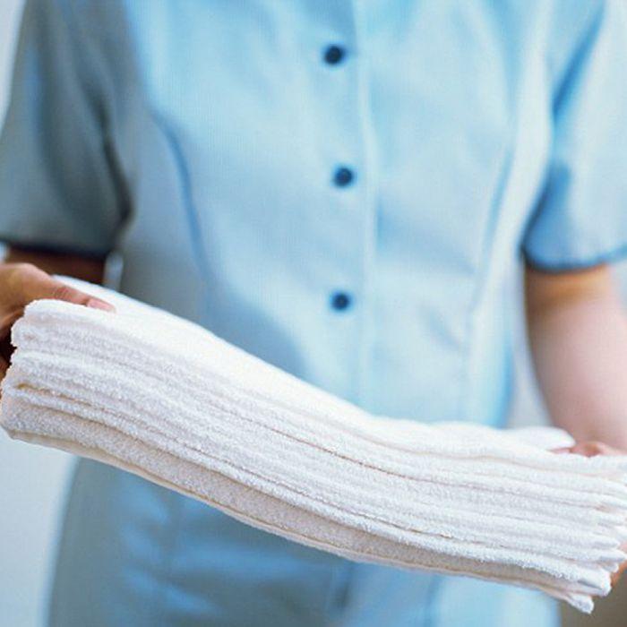 Economy or Garnet Hand Towel